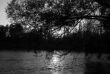 At water_MG_69221-1.jpg