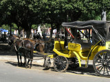two horsepower taxi.....