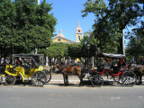 ...one of many that line the Parque Central (Colon)
