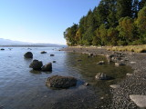 the west coast of Denman Island