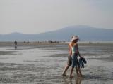 sandbar stroll