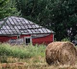 ~~A Roll In The Hay~~