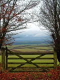 Gate and moorland