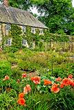Cottage garden, Forde Abbey