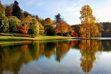 Autumn glory, Stourhead (3645)