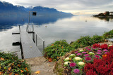 'Cabbage patch' and lake, Montreux