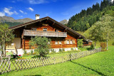 Idyllic spot for a home, Les Diablerets