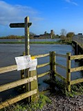 The River Parrett in flood