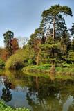 Trees on the riverbank, Bradford-on-Avon