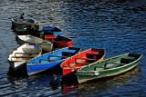 Rowing-boats, Totnes