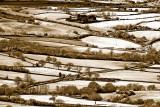 Fieldscape, Dorset