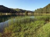 Lac Gravière or Lac des Graves (Lascelle)