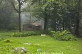 Hunter Cabin Day 1