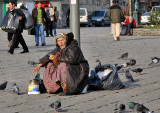 The pigeon lady, Beyazit Square
