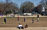Spring at Lincoln Park