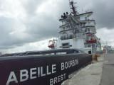 Abeille Bourbon.