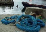 L'amarre bleue