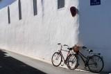 Ré island's bicycles .