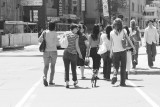 Girls crossing the street with a little dog.
