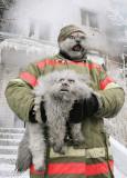 2nd: cat rescue