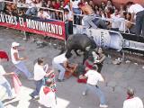 4th: bull-whisperer.