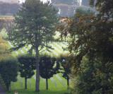 US Graves at Meuse Argonne.JPG