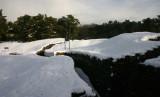Vimy Ridge Trenches.jpg