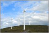 Windmills at Kråkenes,Stadt