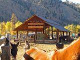 Horse Packer Ranch.