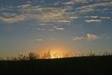 Sunset In Wheatfield Near Douglas