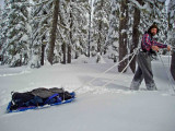 Me Pulling My  Home Made Sled ALong PCT Near White Pass