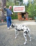 Dave And His Dog Looking At Coleman  Slant Tube Lantern
