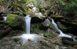 Silver Creek  ( Up Entiat Valley)