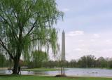 Around the Monument