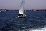 sail boats # 2