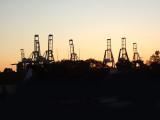 Long Beach Shipping Yard
