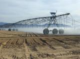 Desert Watering
