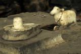 Lingam symbolises the act of creation