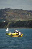 Llyn Peninsula, North Wales, UK.  Fishing launches at anchor