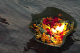 Floating offering at the nightly Aarti ceremony