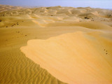 Liwa Oasis on the edge of the Empty Quarter