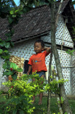 Village boy inland from Banyuwangi