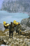 Sulphur mine workers, Ijen