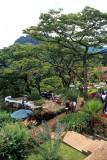 The Ku Chawe Inn, a hill station retreat on the Zomba Plateau at 2000 metres