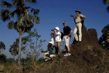 Wildlife spotting, Liwonde National Park