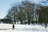 Hampstead Heath in winter 2004