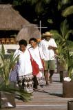 Turtle Island staff