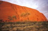 Dawn strikes Uluru (Ayers Rock), Australia
