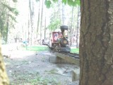 lil smokey at Knobels Grove