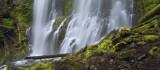 Proxy Falls Panoramic